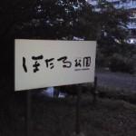 120607_1906~01.jpg